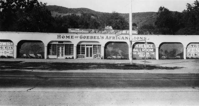 """""""Home of Goebel's African Lions"""" circa 1929 (Courtesy of Conejo Through the Lens, Thousand Oaks Library)"""