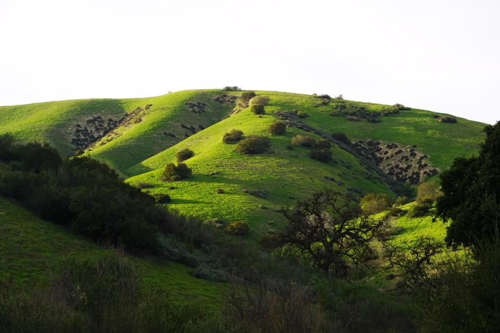 Cheeseboro Canyon in Agoura Hills