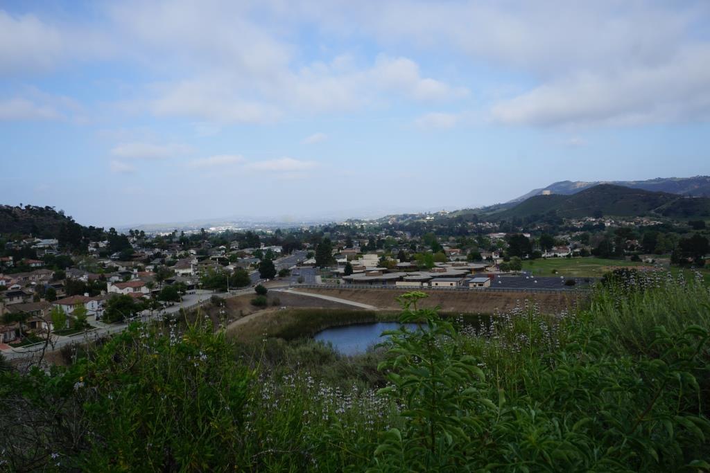 Views toward the protected pond behind Cypress Elementary, along Via Rio.
