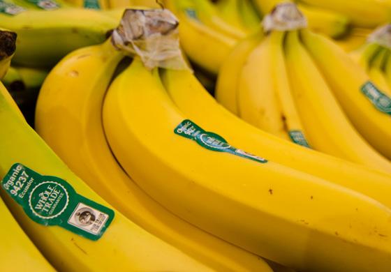 whole_trade_bananas_main_image.jpg