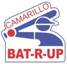 CamBatRUp.png