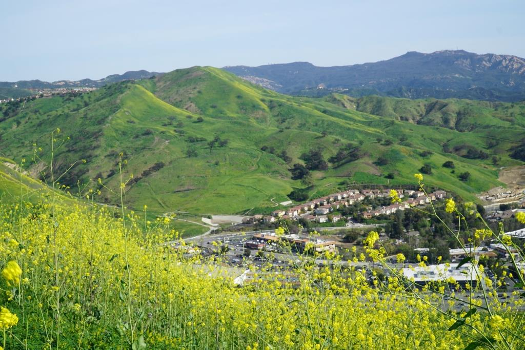 Las Virgenes Highlands Park