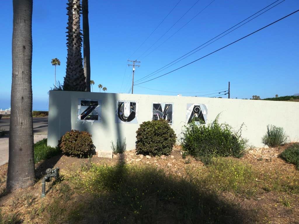 Zuma 1.JPG