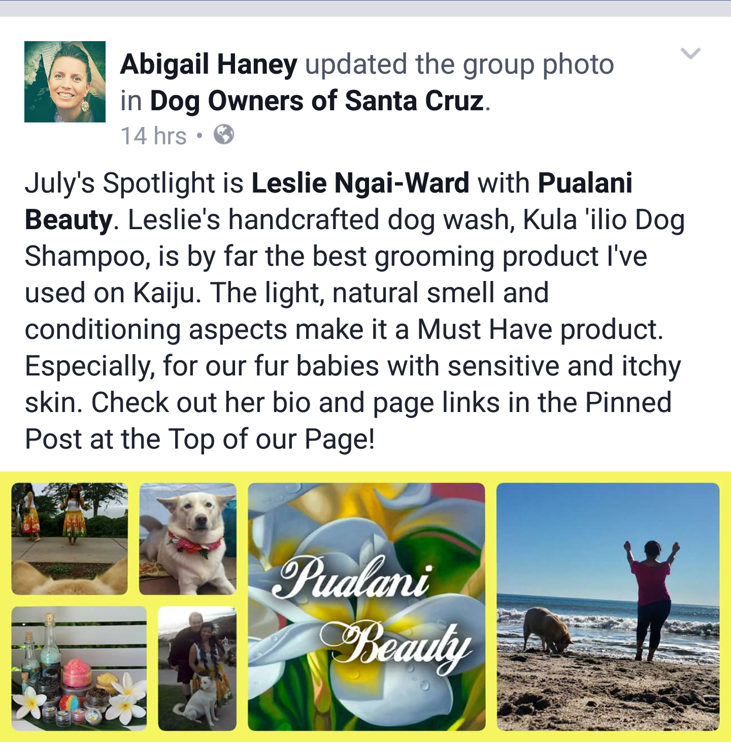 We were featured in Dog Owners of Santa Cruz (DogOSC) for our Kula 'ilio (dog) Wash