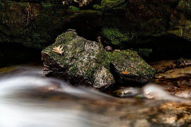 Sometimes I take life lessons from boulders #naturegood . . . . . .  #roamtheplanet #ourplanetdaily #awesomeearth #artofvisuals #visualsoflife #awakethesoul #thoughtoftheday #moodygrams #moodnation #exploretocreate #welivetoexplore #stayandwander  #liveforthestory #voyaged #longexposure #waterfall #nc #ncoutdoors