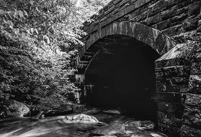 I'll never get over the thrill of almost losing gear in a flowing stream of water 😂 . . . . . .  #waterfall #blackandwhite #bnw #gameoftones #photooftheday #sonya7riii #sonyalpha #fineartphotography #bnw_nature #roamtheplanet #ourplanetdaily #wanderlust #awesomeearth #artofvisuals #visualsoflife #awakethesoul #thoughtoftheday #moodnation #exploretocreate #welivetoexplore #stayandwander #smokymountains #blueridgemountains #blueridgeparkway #ncoutdoors #carolinas