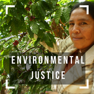 We support a number of projects that meaningfully engage community members in the fight for environmental protection and justice.