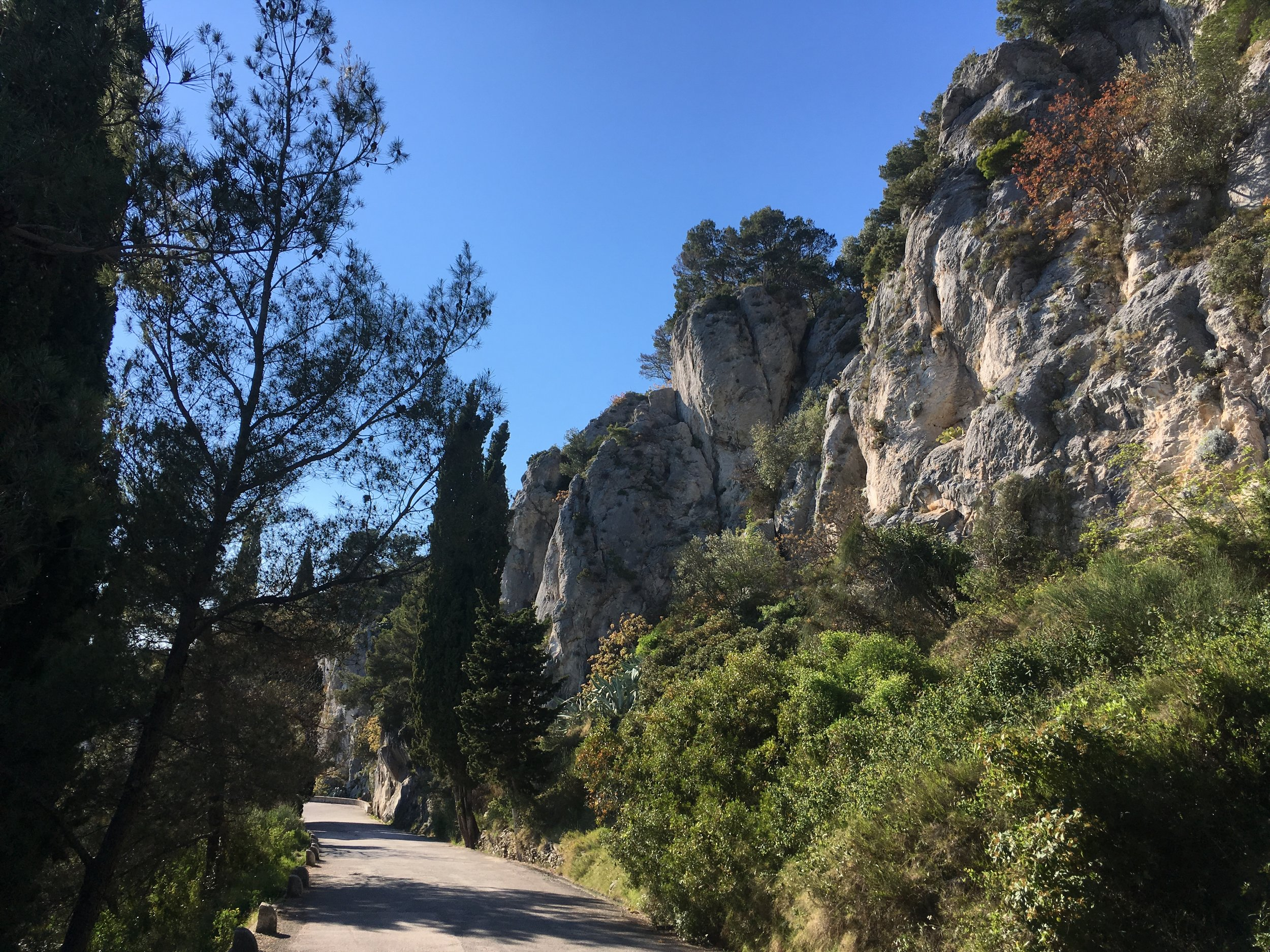 Several hiking and biking trails offer a variety of views of Split