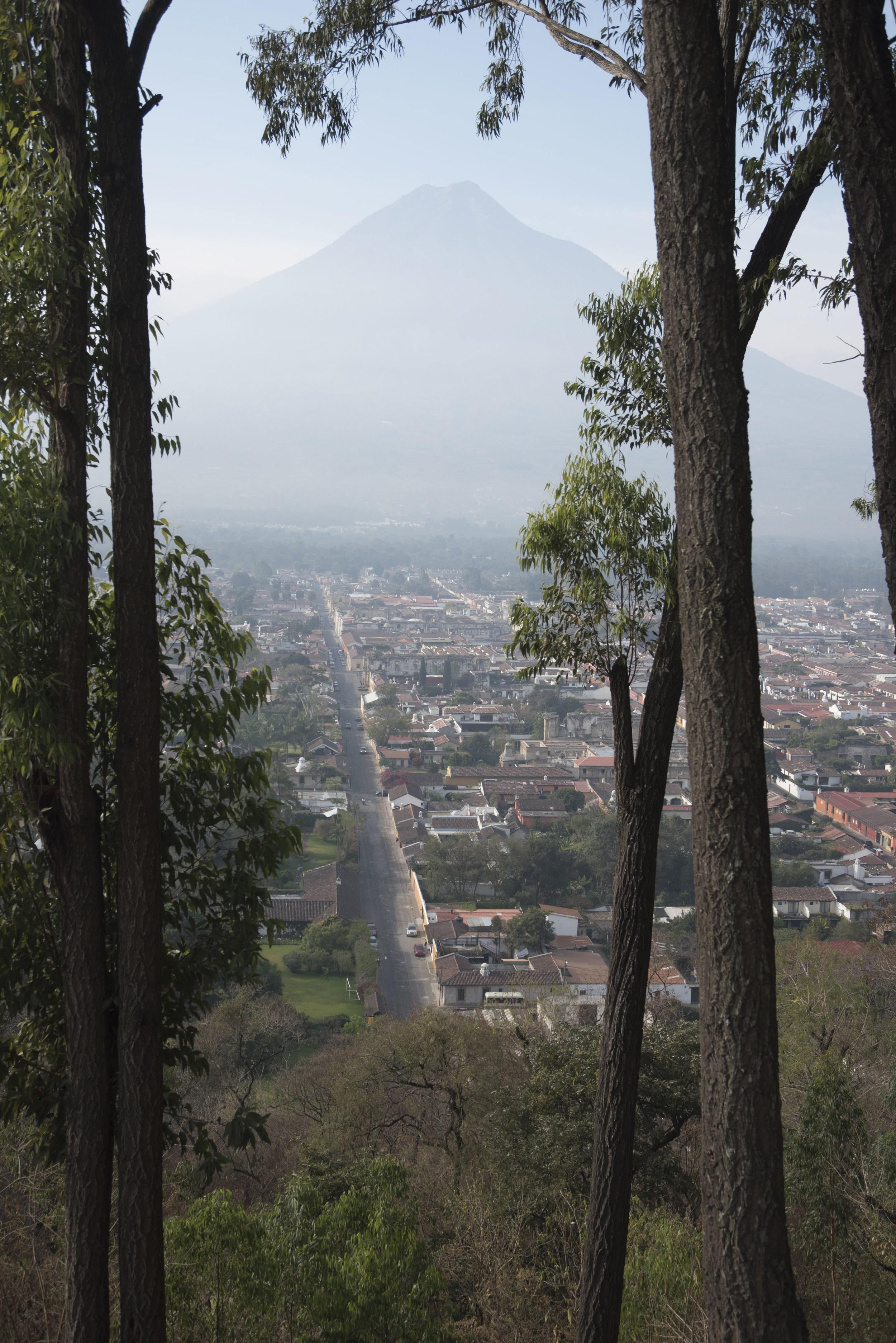 Creeping on Antigua and Volcan Agua through the trees from Cerro de la Cruz. (Antigua, Guatemala; Feb 2017)