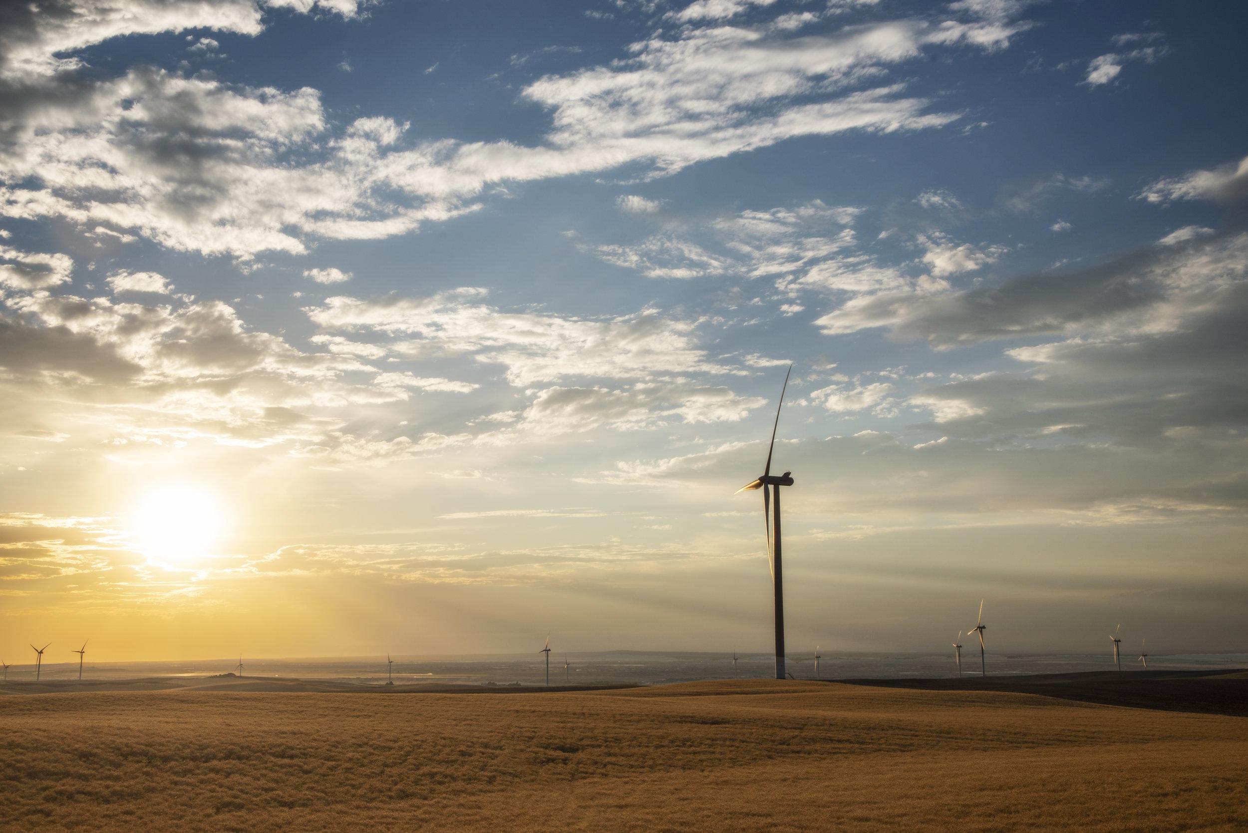 Windmills(6247)_PS.jpg