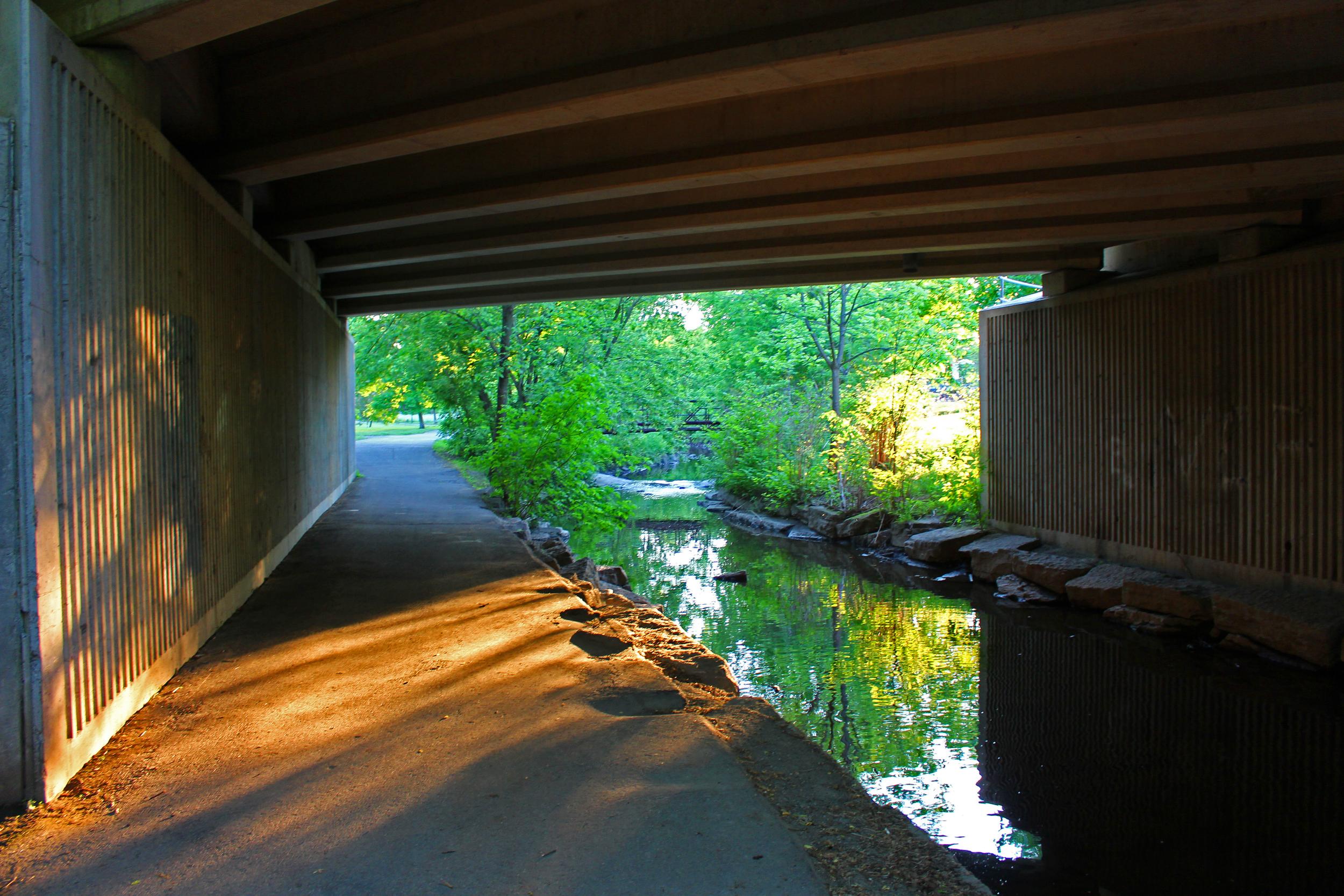 Brock Trail by Steph Dunbar IMG_0248.jpg