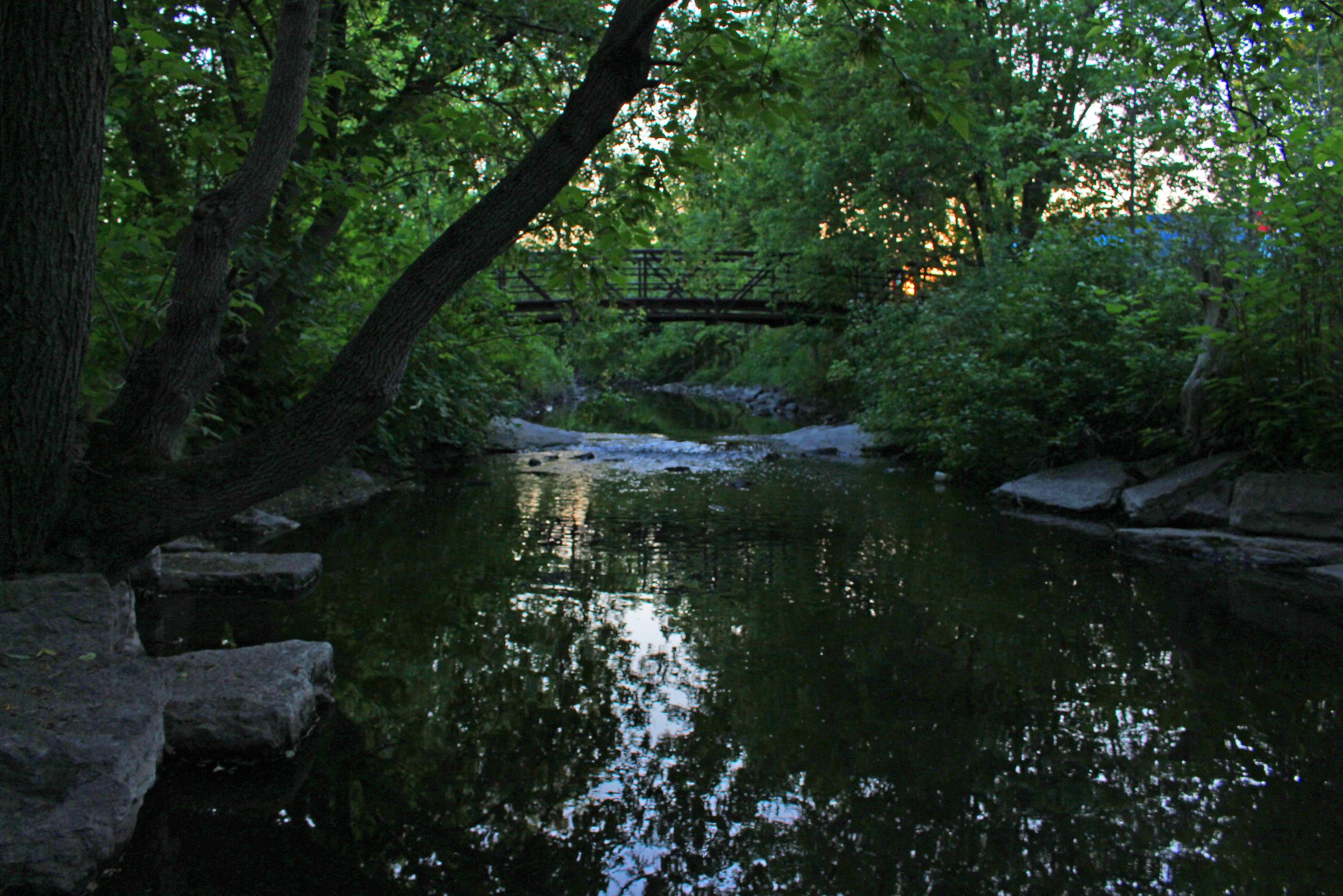 Brock Trail by Steph Dunbar IMG_0271.jpg