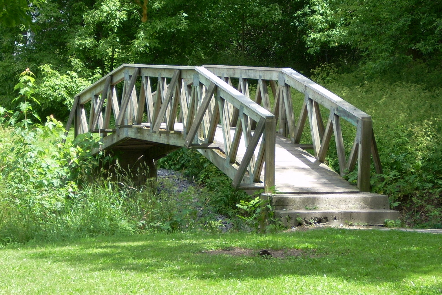 Brock Trail scene (dGrant - 1 JULY 2011) (13).JPG