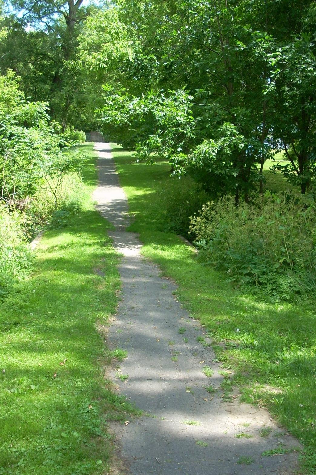 Brock Trail scene (dGrant - 1 JULY 2011) (31).JPG