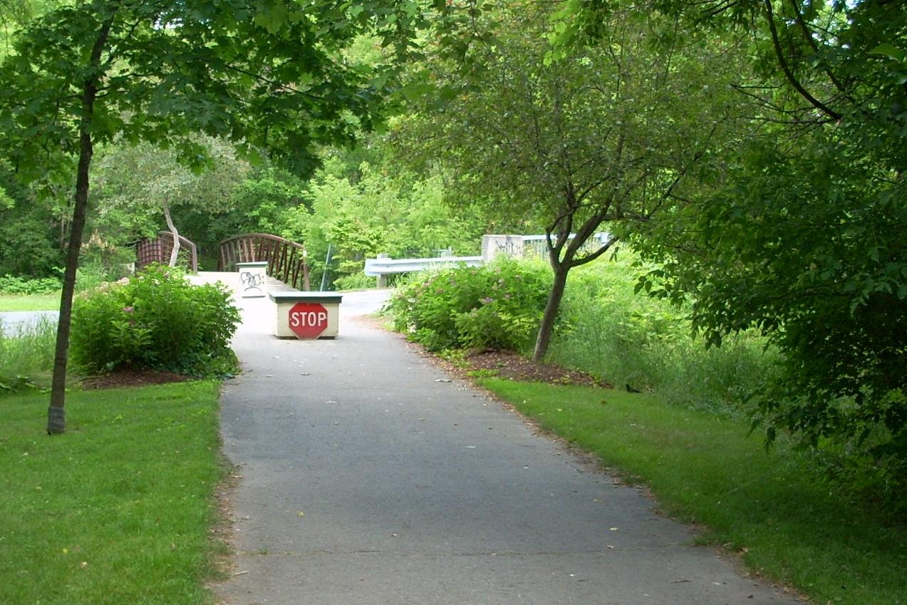 Brock Trail scene (dGrant - 1 JULY 2011) (37).JPG
