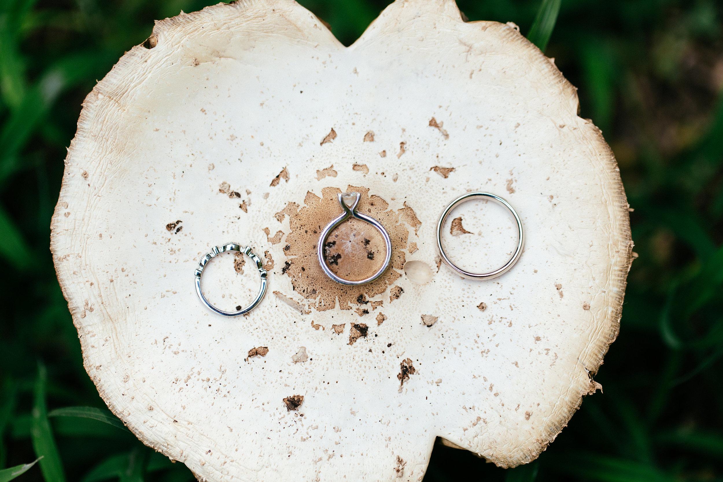 christina-karst-photography-ivory-and-beau-bridal-boutique-sarah-seven-lafayette-boho-bride-boho-bridal-boutique-indie-bridal-boutique-savannah-bridal-boutique-savannah-wedding-dresses-savannah-bridal-gowns-2.jpg