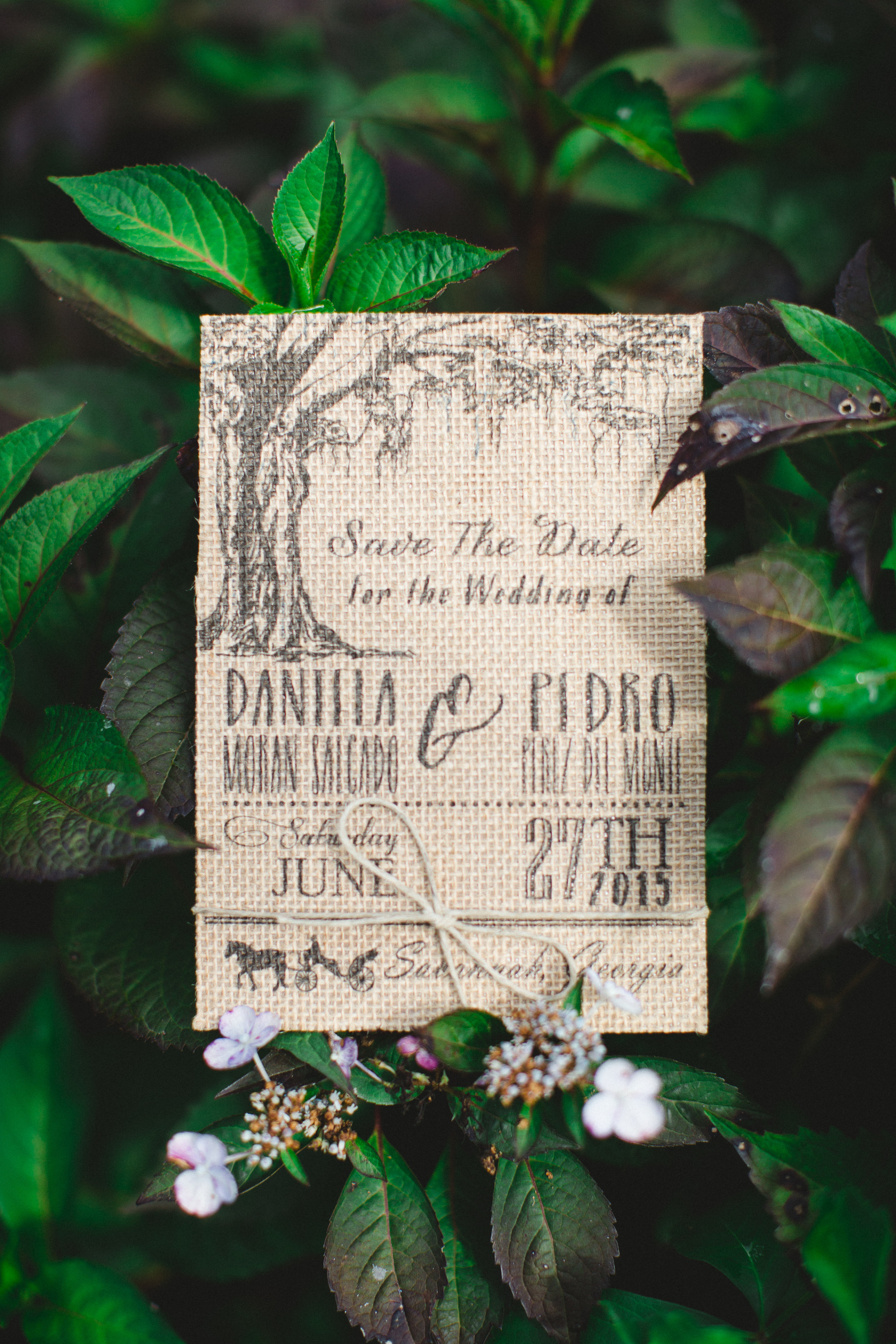 daniela-and-pedro-wedding-izzy-hudgins-photography-a-to-zinnias-whitfield-square-charles-h-morris-center-wedding-ivoyy-and-beau-bridal-boutique-dorie-hayley-paige-savannah-wedding-planner-savannah-bridal-boutique-savannah-weddings-1.jpg