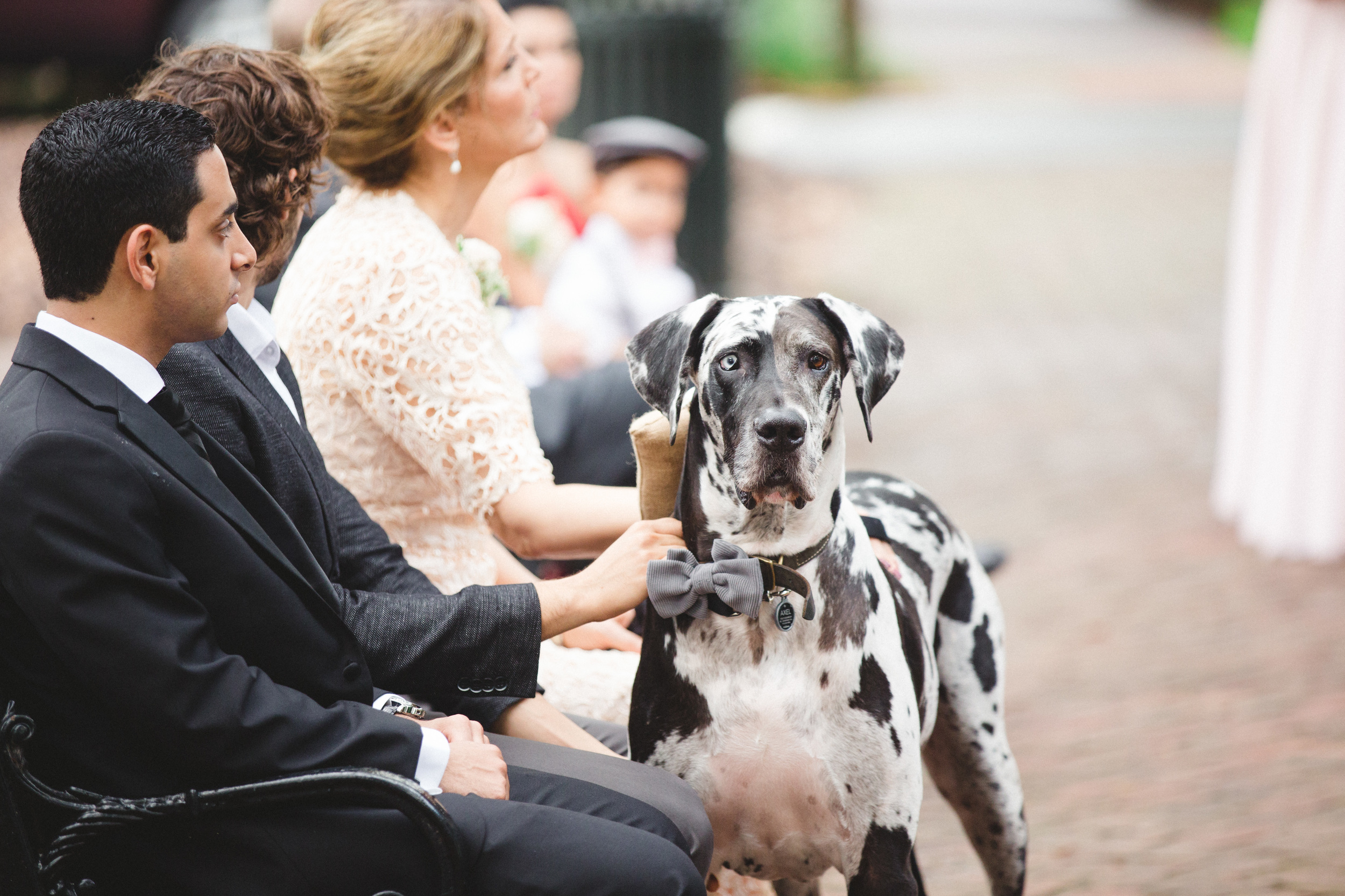 daniela-and-pedro-wedding-izzy-hudgins-photography-a-to-zinnias-whitfield-square-charles-h-morris-center-wedding-ivoyy-and-beau-bridal-boutique-dorie-hayley-paige-savannah-wedding-planner-savannah-bridal-boutique-savannah-weddings-27.jpg