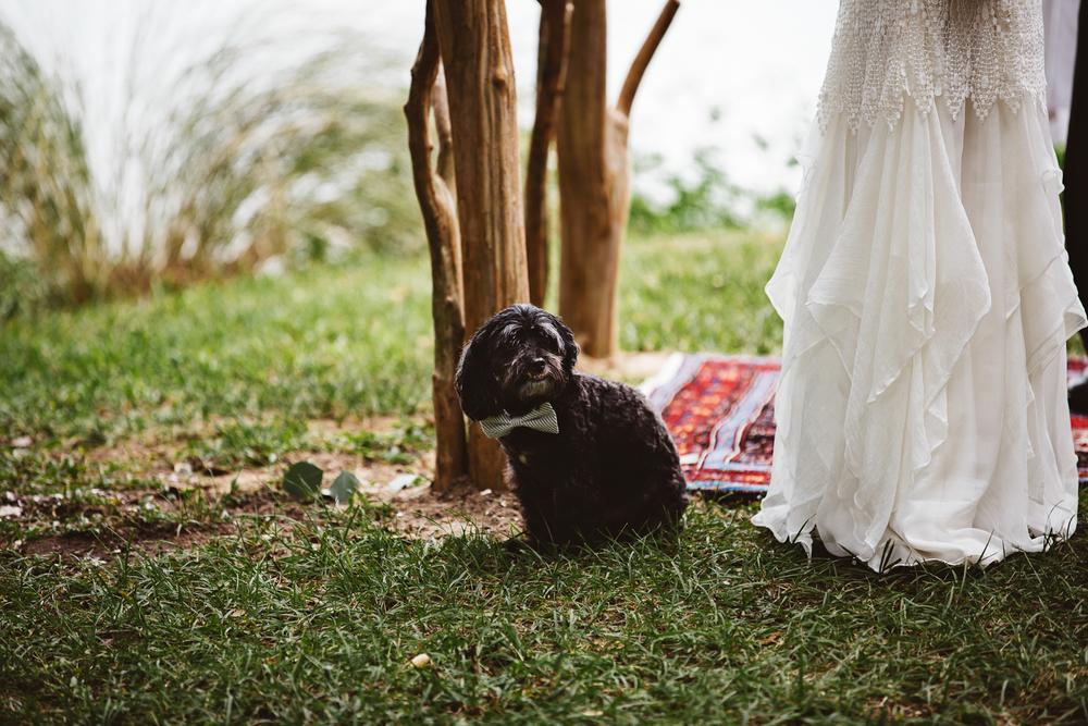 katherine-dalton-photography-saint-isabel-wedding-dress-handmade-wedding-dress-indy-wedding-dress-ivory-and-beau-bridal-boutique-savannah-wedding-dresses-savannah-bridal-boutique-savannah-wedding-gowns-5.jpg