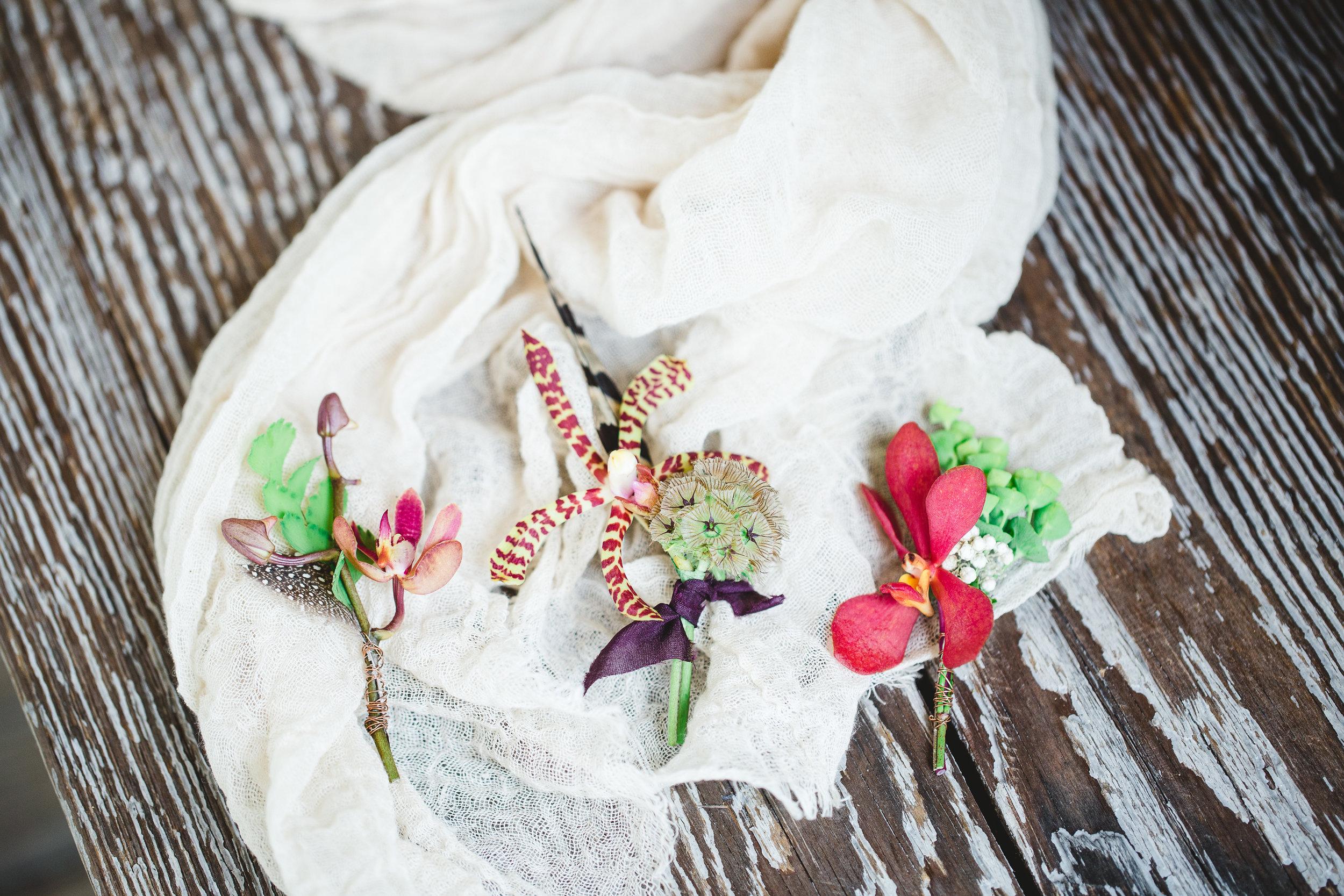izzy-hudgins-photography-emily-burton-designs-ivory-and-beau-bridal-boutique-daughters-of-simone-sonje-jenny-yoo-bridesmaids-glamping-wedding-boho-wedding-outdoor-wedding-coldwater-gardens-wedding-savannah-bridal-boutique-savannah-wedding-planner-4.jpg