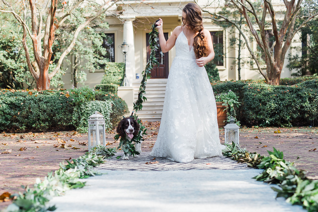 dog-ringbearer-dogs-in-weddings-dog-flower-collar-dog-flower-leash-ivory-and-beau-blush-by-hayley-paige-fleur-de-lis-savannah-bridal-boutique-savannah-bridal-shop-savannah-wedding-dresses-ships-of-the-sea-wedding-inspiration.JPG