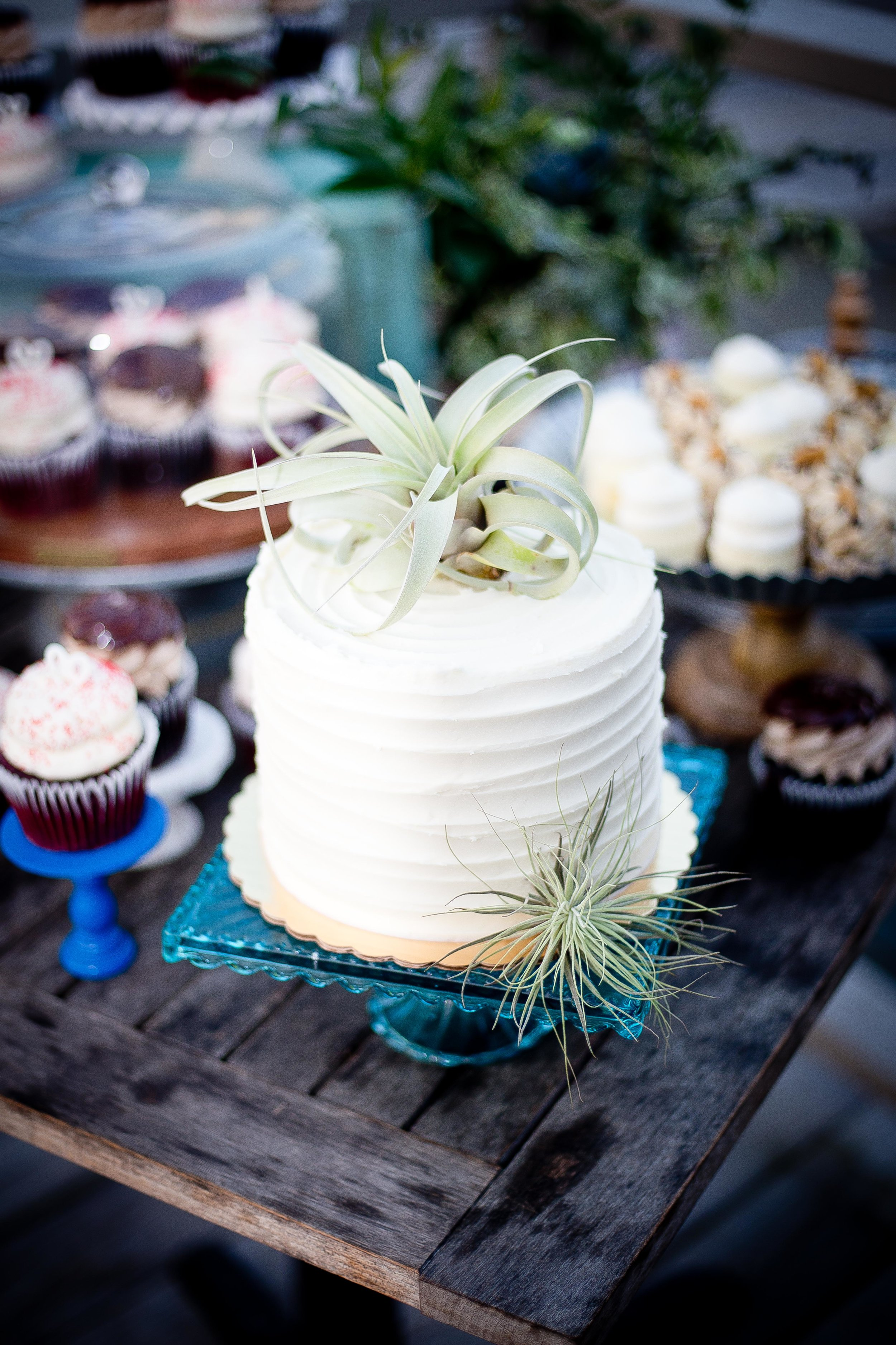 Tina-and-Javin-Wedding-Wedding-Cake-Savannah-Bakery-GiGis-Cupcakes-RedVelvet-Airplant-Savannah-Planner-Ivory-and-Beau-Succulent-Cakes-Natural-Caketoppers-Wyld-Dock-Bar-Bride-Wedding-Deserts-Cupcakes-Airplant-Wedding-Caketopper--jpg.jpg