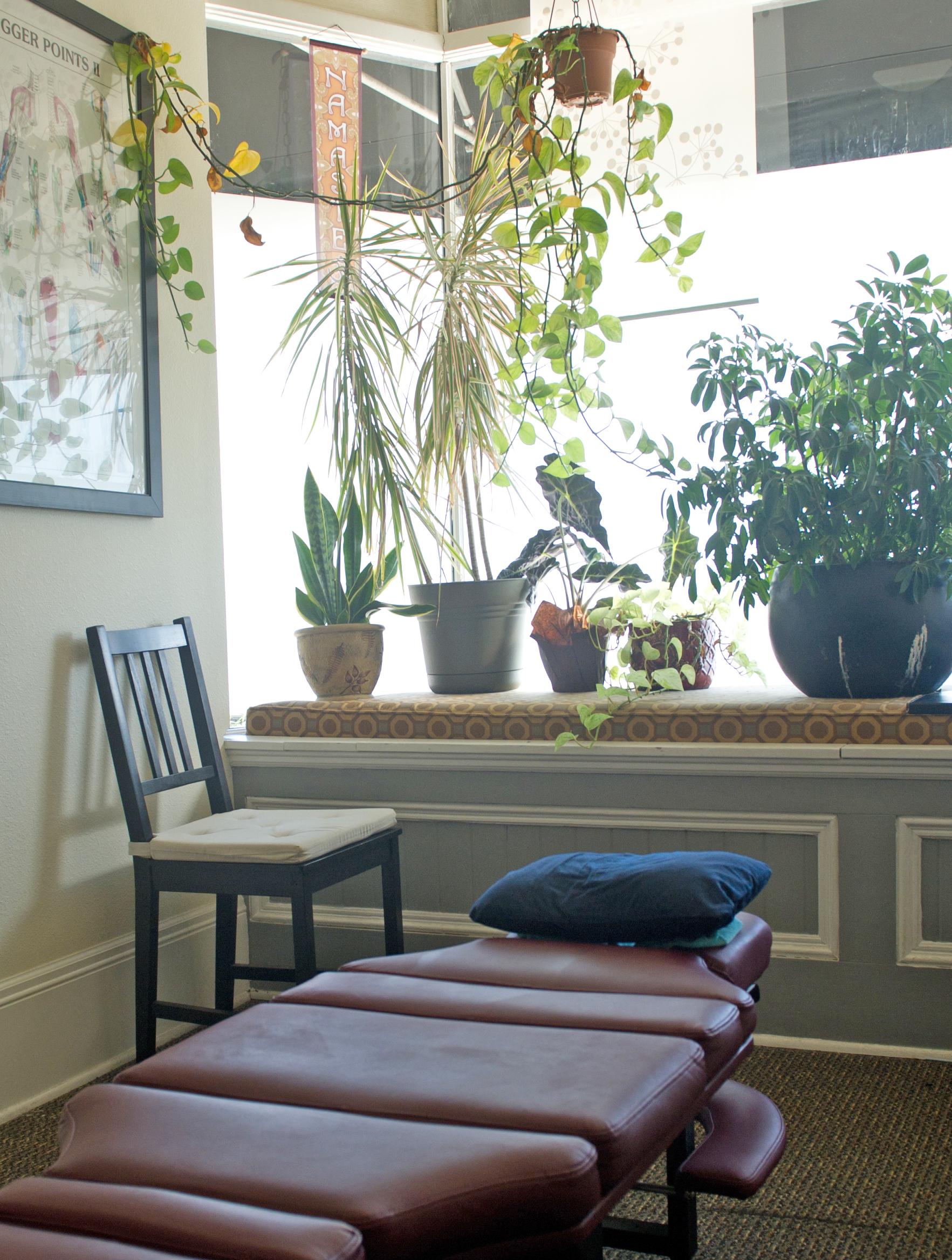 Kenton Wellness Cooperative offers Chiropractic medicine