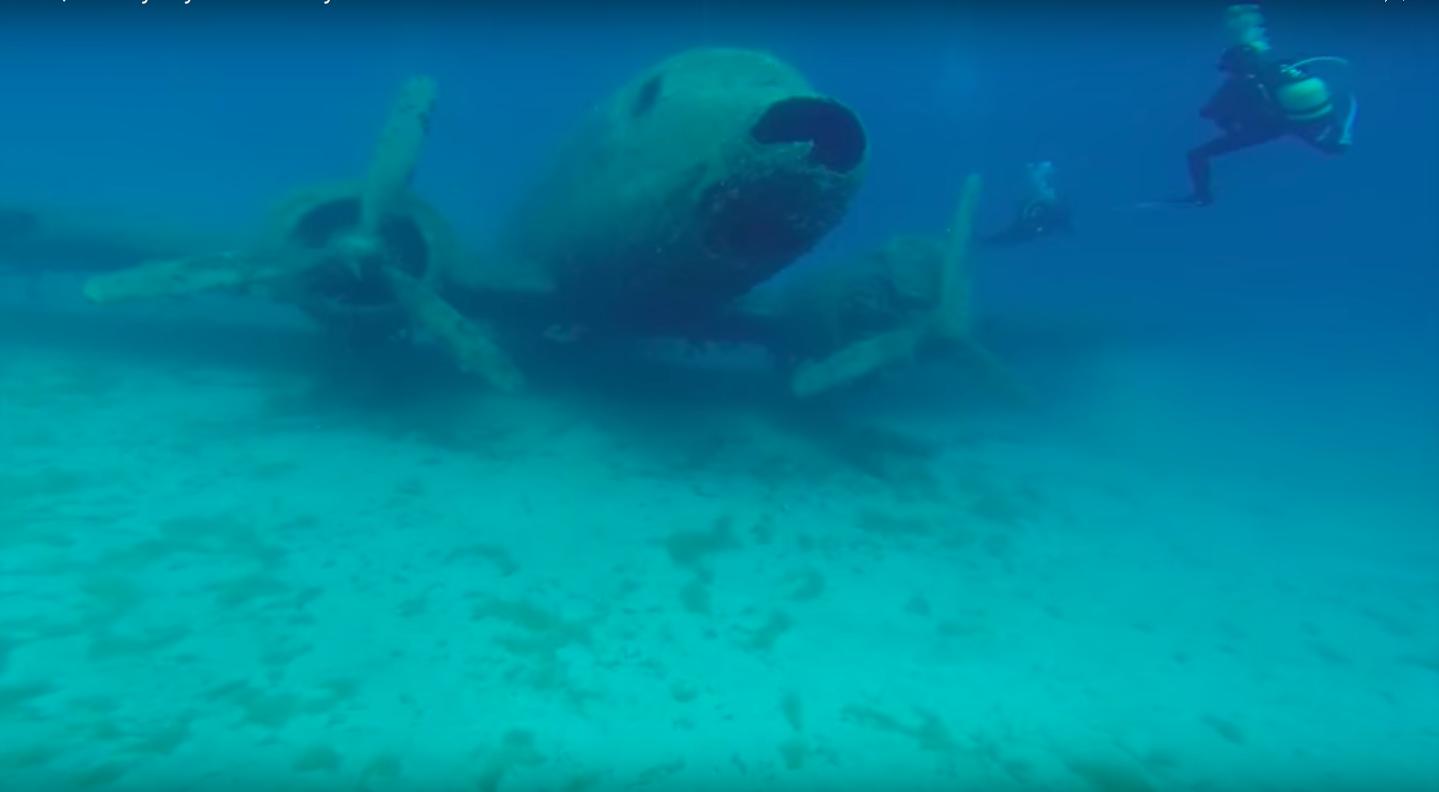 Sunken planes make excellent artificial reefs