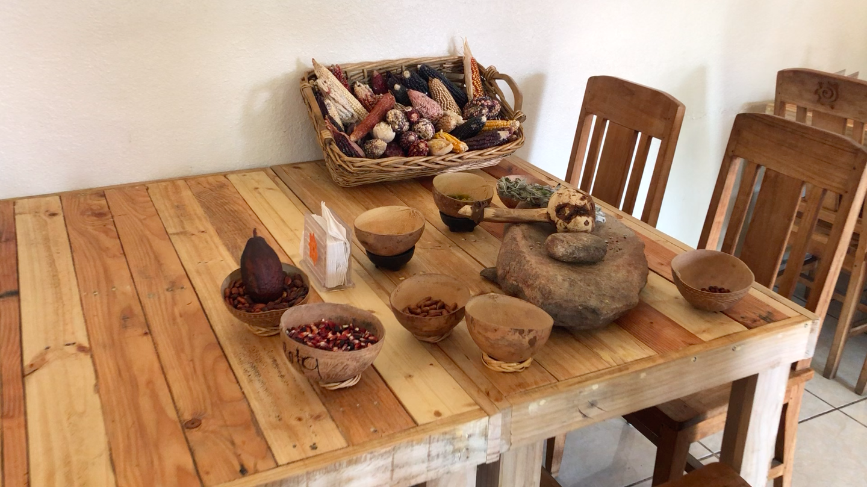 Traditional Kumeyaay Ingredients —