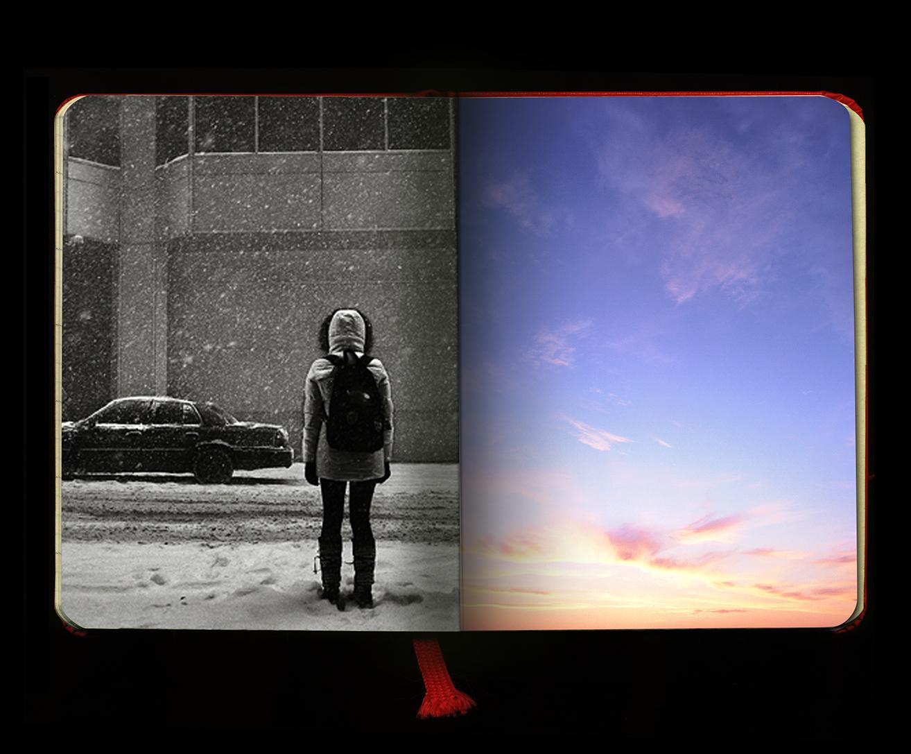 snowy_book_smaller.jpg