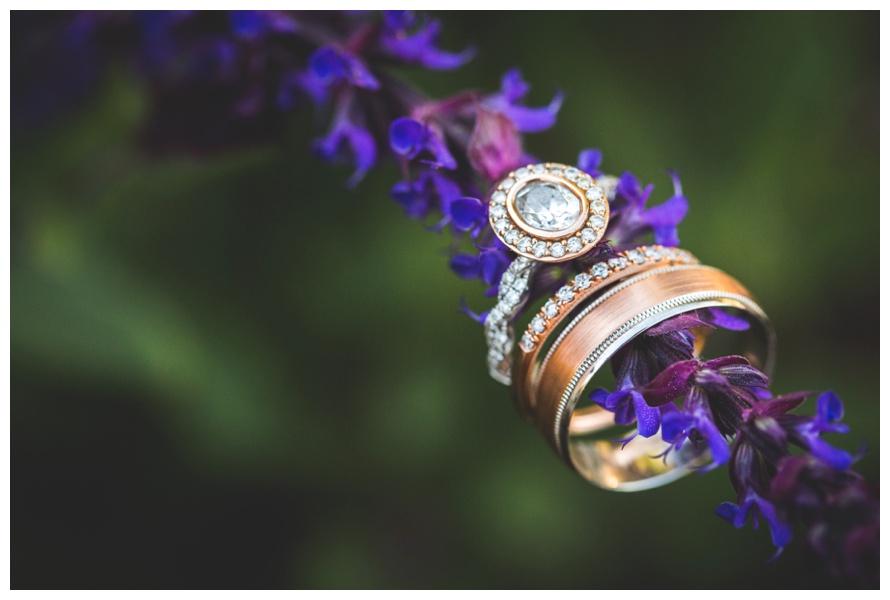 mount_princton_hotsprings_wedding_1193.jpg