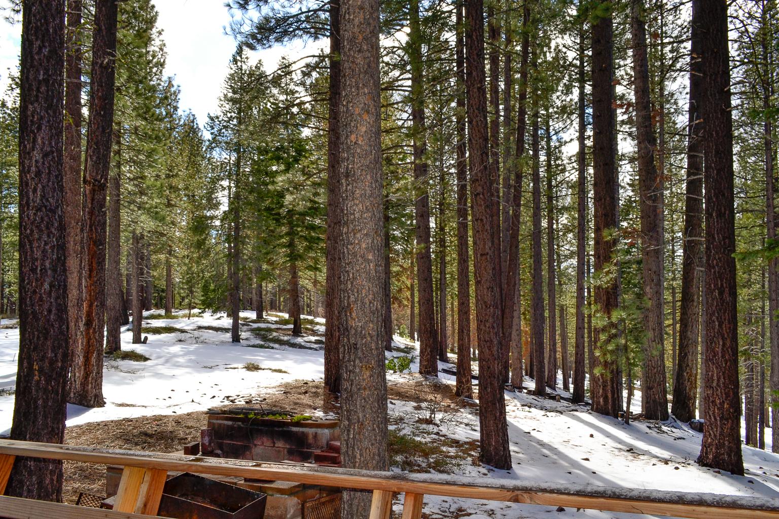 Tahoe_11.jpg