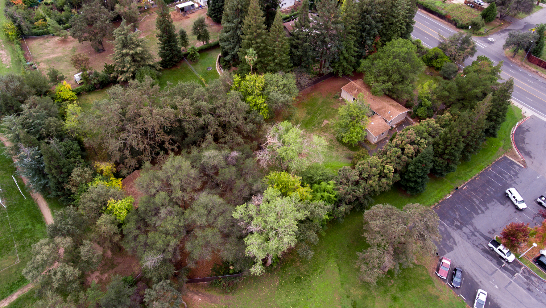 1730 Hazel _aerial.jpg