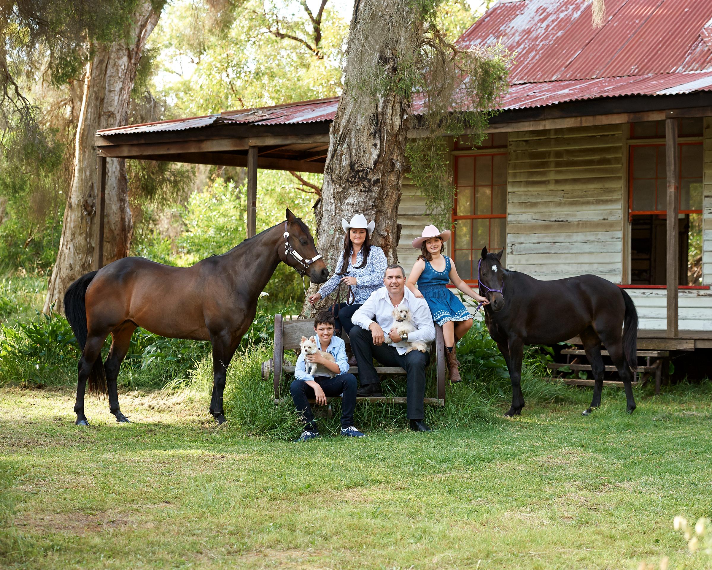 horses_family_pet_four_paws_portrait