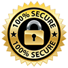 ssl-secure100.png