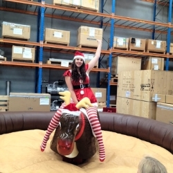 Hire a reindeer for your next Christmas party