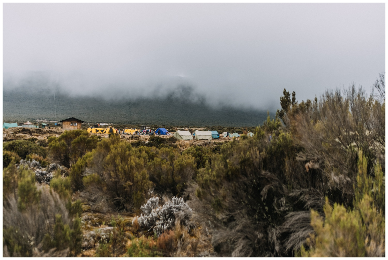 Kilimanjaro_0017.jpg