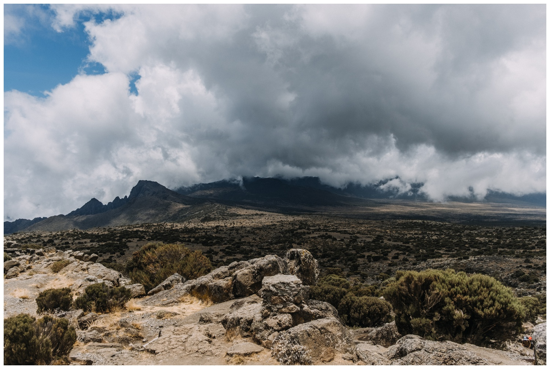 Kilimanjaro_0027.jpg