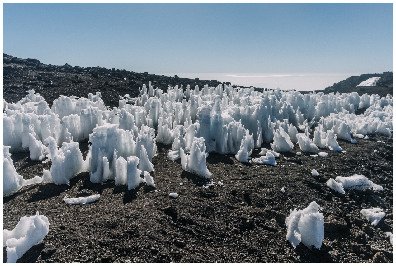 Kilimanjaro_0119.jpg