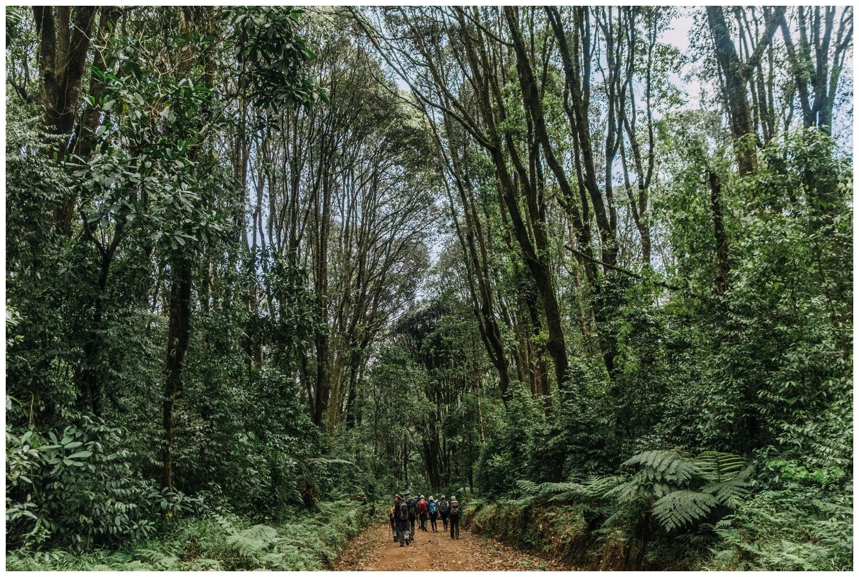 Kilimanjaro_0142.jpg