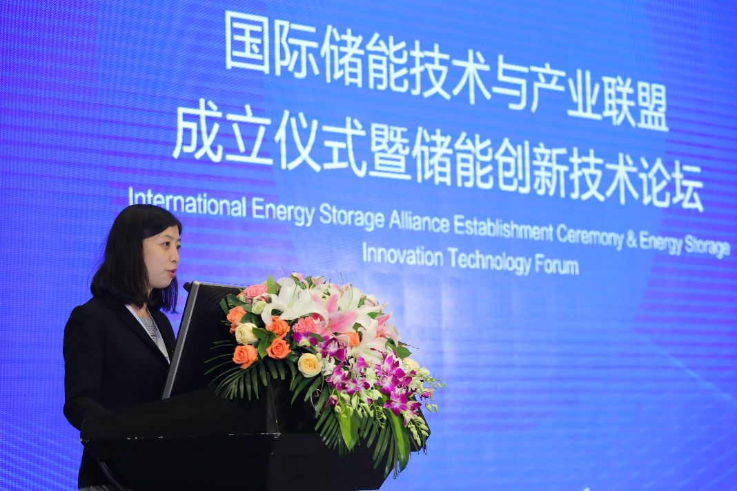 Chinese Academy of Sciences International Cooperation Department International Organizations Office Director Feng Kai Delivers a Speech