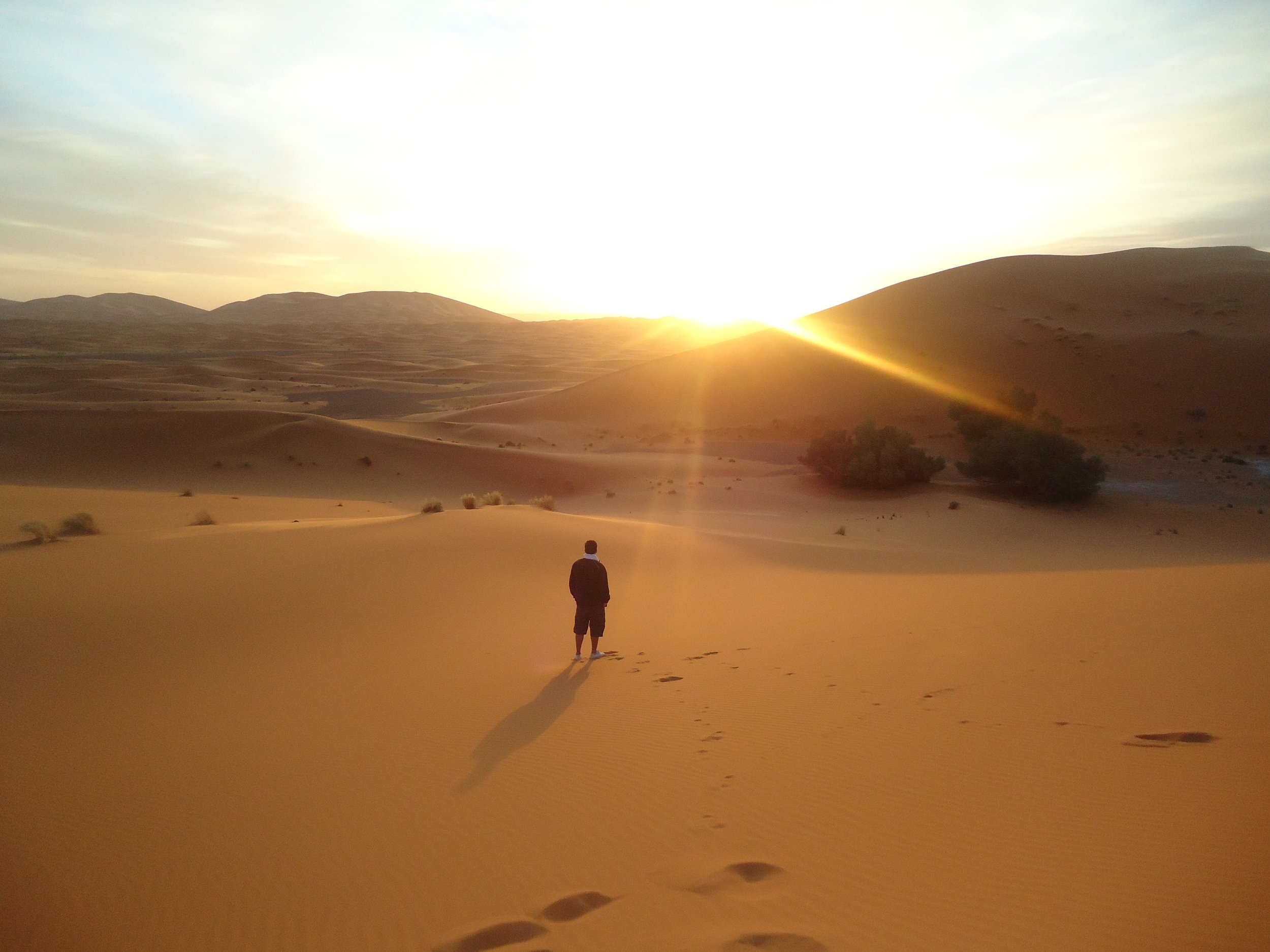backlit-dawn-desert-774835.jpg