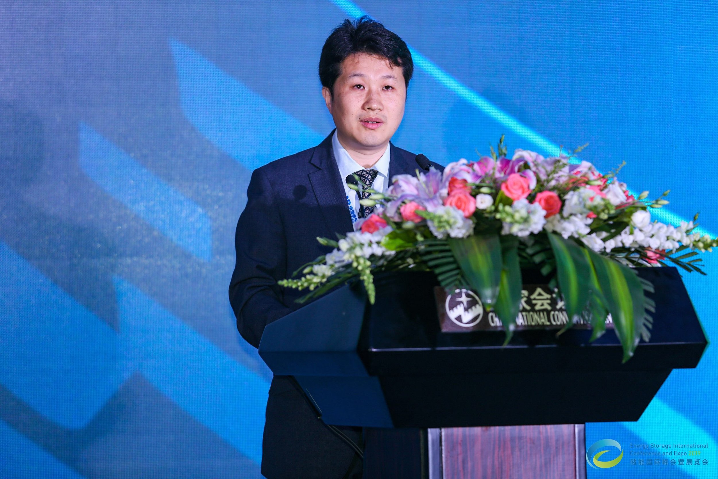 China Energy Storage Alliance Chairman Chen Haisheng Delivers a Speech