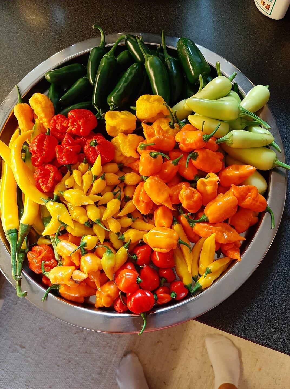 Chili Vanili Products - Produkter med en välbalanserad heta och sötma.