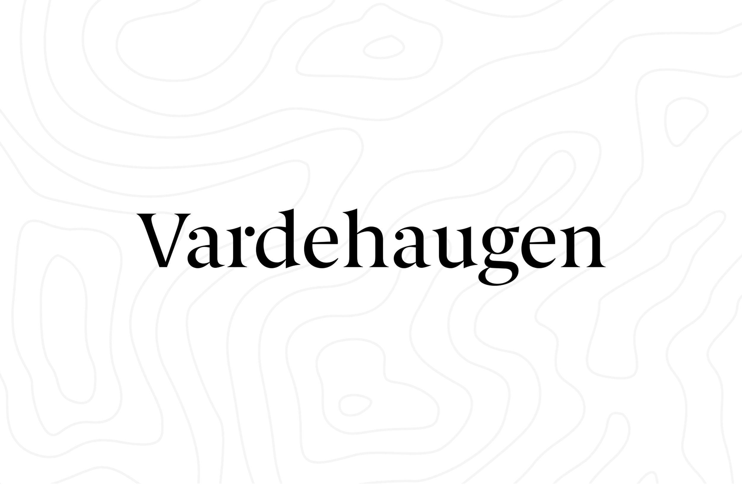 The amazing Vardehaugen is behind the FORMAT LIGHT 2019. Stay tuned for an introduction to the office and the story behind their design.