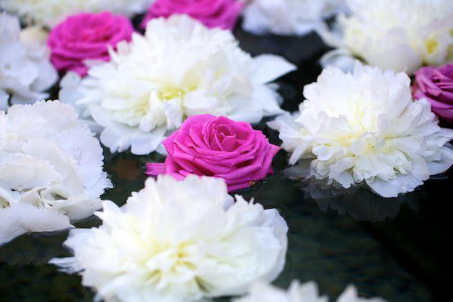flowers-4.jpg