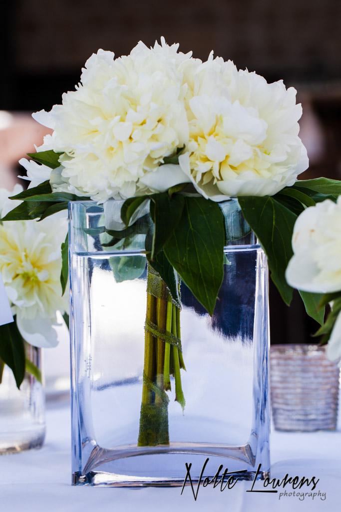 flowers-42.jpg