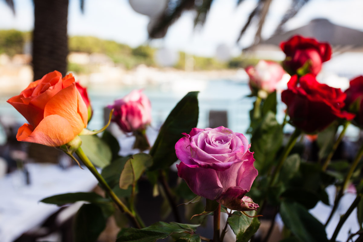 flowers-44.jpg