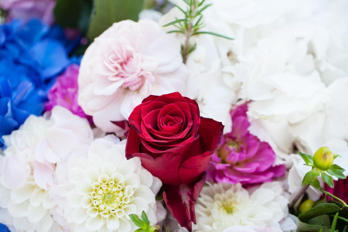 flowers-51.jpg