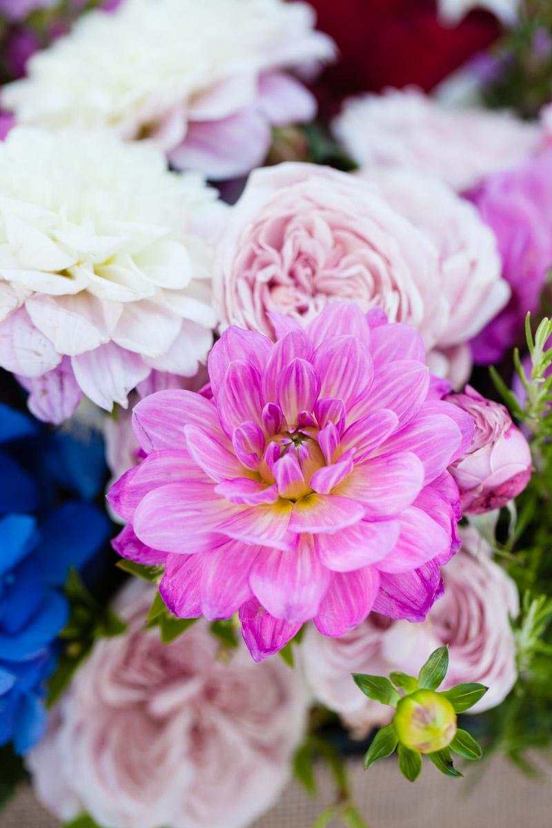 flowers-55.jpg